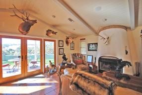 living room fireplace 1